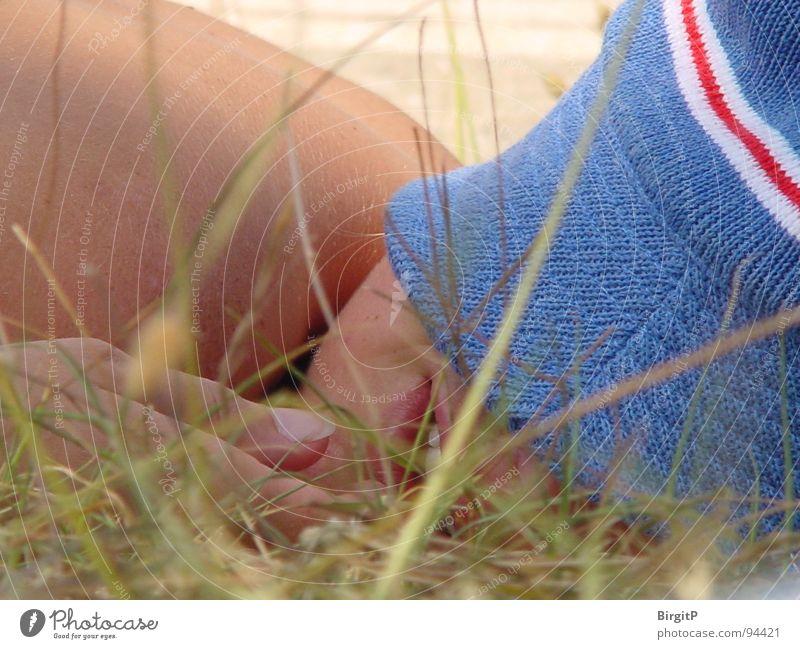 Schlafen im Sommer schlafen Wiese Ferien & Urlaub & Reisen Halm Gras Mütze Hut liegen