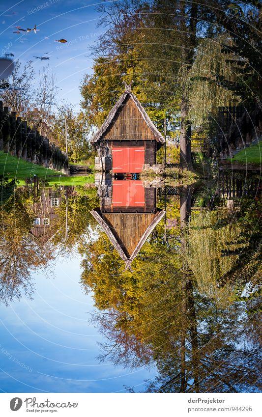 Unsere garage steht unter Wasser Ferien & Urlaub & Reisen Pflanze Landschaft Umwelt Herbst Gefühle Stimmung Freizeit & Hobby Tourismus Verkehr Ausflug Fluss