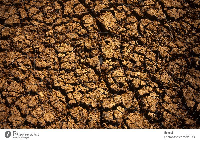 Schlechtes Klima Wärme Erde Bodenbelag Klima Physik Wissenschaften Riss Dürre Klimawandel getrocknet Ebbe Gewächshaus Klimaschutz