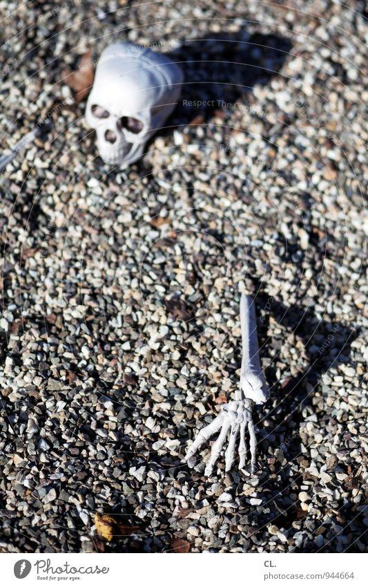 dorfleben Halloween Mensch Senior Kopf Arme Hand Finger Schädel 1 60 und älter Boden Kieselsteine Skelett Stein gruselig Tod Angst Entsetzen Todesangst verstört