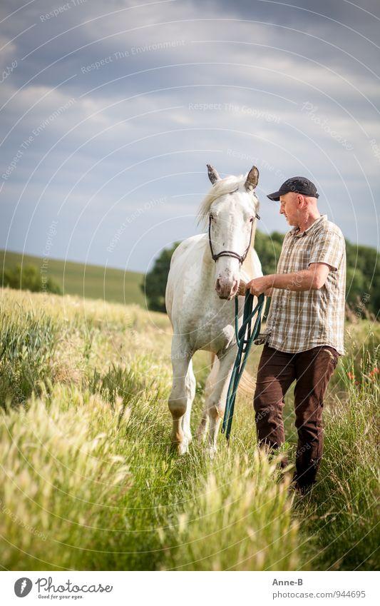 Pferdeflüstern Mensch Himmel Natur Mann weiß Erholung Landschaft Tier Erwachsene Wiese Wege & Pfade gehen maskulin Freizeit & Hobby Feld Körper