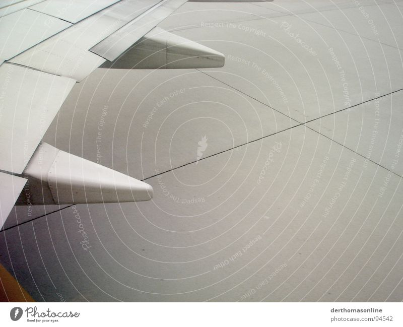 geschafft - endlich unten Ferien & Urlaub & Reisen grau Angst Flugzeug Beton Beginn Erde Luftverkehr trist Bodenbelag Asphalt Tragfläche Flughafen Stahl