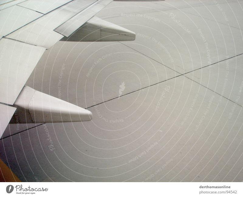 geschafft - endlich unten Ferien & Urlaub & Reisen grau Angst Flugzeug Beton Beginn Erde Luftverkehr trist Bodenbelag Asphalt Tragfläche Flughafen Stahl Langeweile Flugzeuglandung