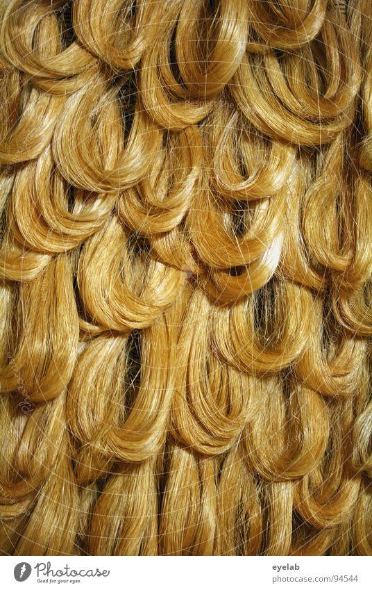 Achtung: Blondinenwitz ! blond Dame Pferd schwarz braun rot rothaarig Haarfarbe Perücke Matten langhaarig Hippie Haarsträhne Haarpflege Locken