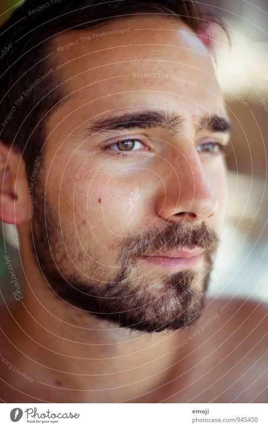 Sommerbräune maskulin Junger Mann Jugendliche Erwachsene Gesicht 1 Mensch 18-30 Jahre schön braun Sonnenbad Dreitagebart Bart dunkelhaarig Farbfoto Nahaufnahme