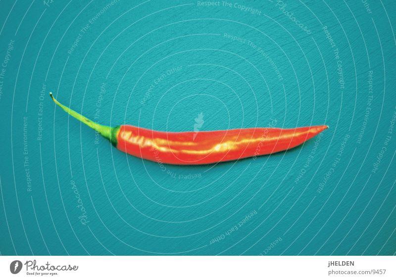 Scharfe Sachen auf Leinwand Lebensmittel Gemüse Kräuter & Gewürze Ernährung frisch grün rot Paprika türkis einfarbig pepperocini Scharfer Geschmack Farbfoto