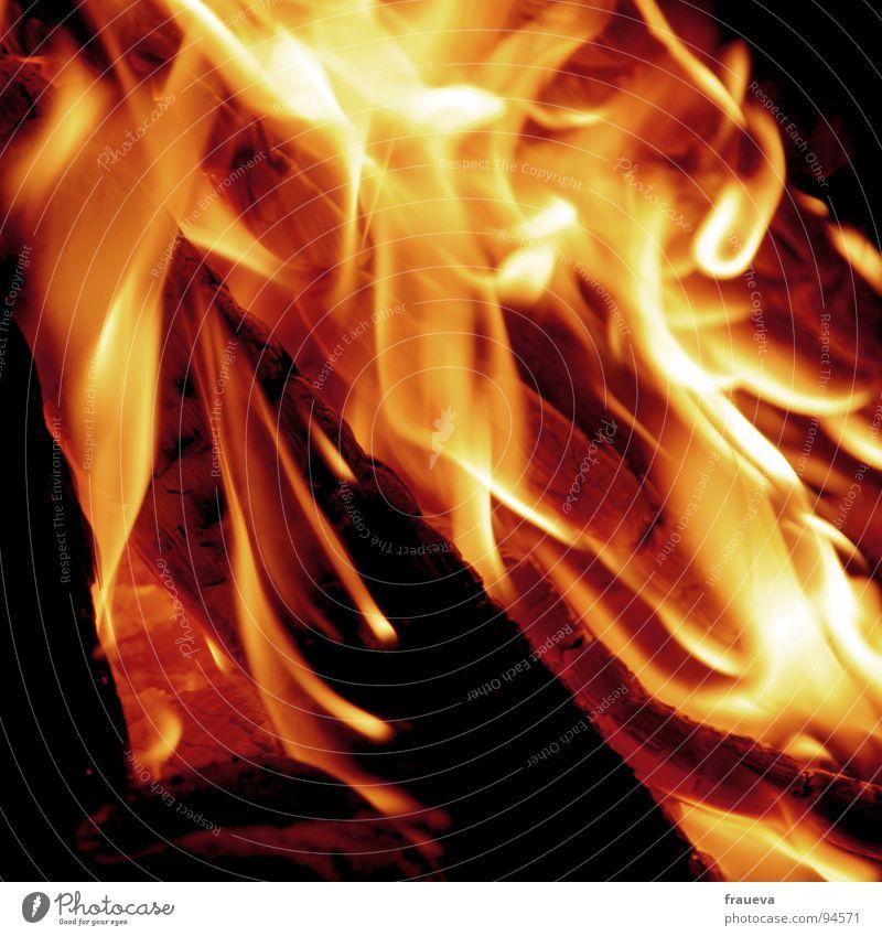 fire in my soul Sommer rot gelb Wärme Gefühle Holz Romantik Brand Feuer Macht Teile u. Stücke heiß Physik Flamme brennen Feuerstelle