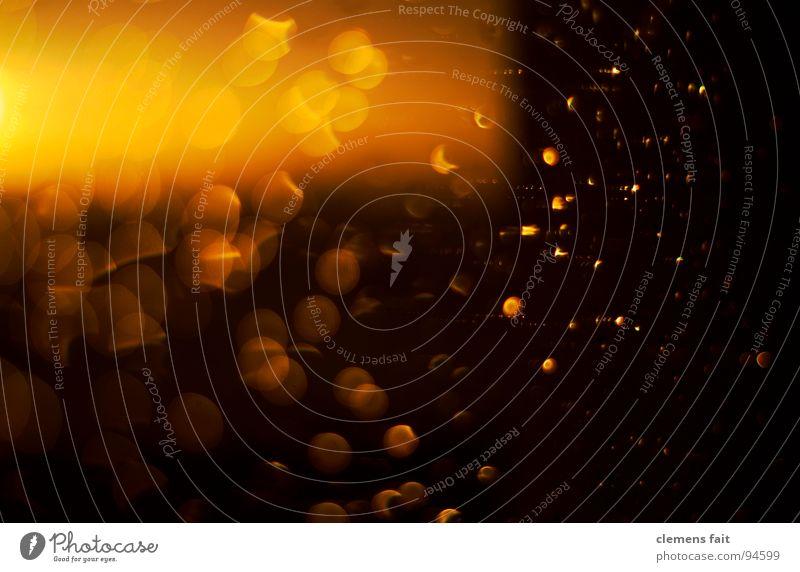 Regen Sonne gelb Farbe Wärme orange glänzend Wassertropfen Physik Punkt Fensterscheibe Sonnenuntergang nachsichtig Offenblende
