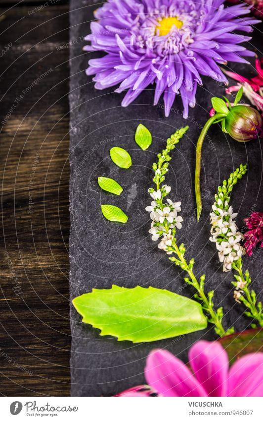 Herbstblumen Dekoration auf dunklen Tisch Design Sommer Haus Garten Natur Pflanze Blume Blumenstrauß Ornament gelb grün violett rosa Decoration autumn flowers