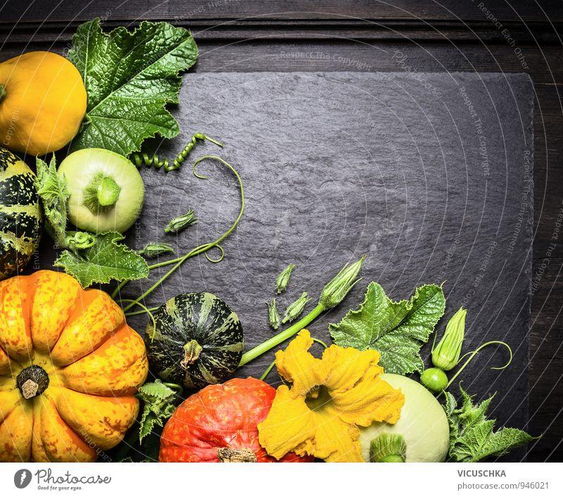 Dekoration aus bunten Kürbisse verschiedener Sorten Natur Pflanze grün schwarz dunkel Gesunde Ernährung gelb Herbst Holz Hintergrundbild Garten braun