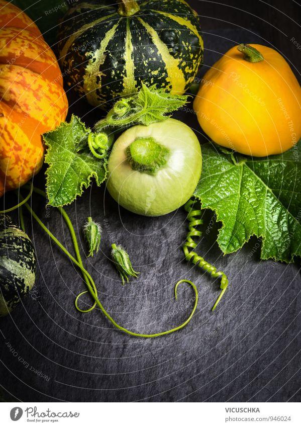 Bunte Kürbisse mit Blüten, Stängel und Blätter auf Schiefer Natur Pflanze Blatt gelb Herbst Blüte Hintergrundbild Garten Lebensmittel Freizeit & Hobby Dekoration & Verzierung Design Tisch Gemüse Stengel Ernte