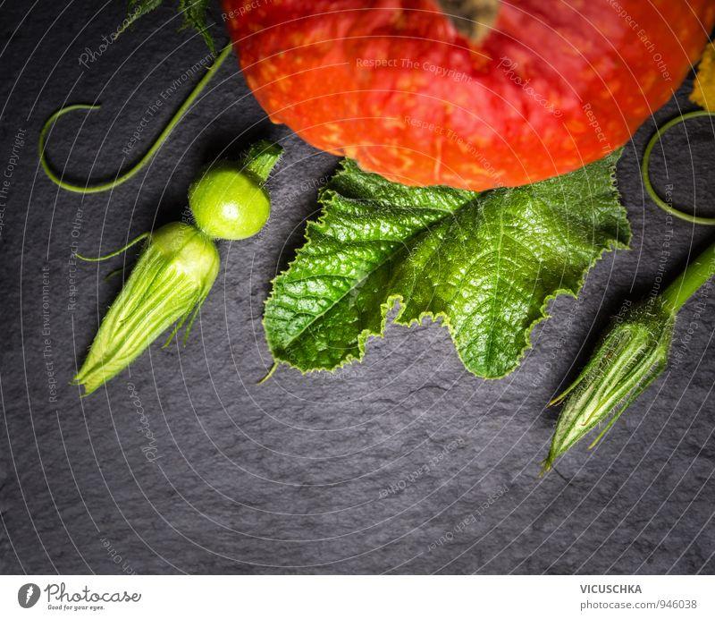 Kürbis Stengel, Blüten und Früchte auf Schiefer Lebensmittel Gemüse Ernährung Bioprodukte Vegetarische Ernährung Diät Stil Design Gesunde Ernährung