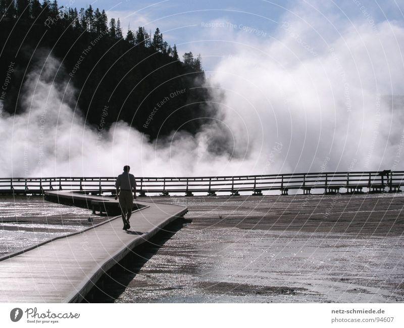 Weg ins Ungewisse Mensch Mann Himmel Einsamkeit Freiheit Holz Wege & Pfade Nebel Sicherheit Ziel Vertrauen vorwärts Konzentration Geländer einzeln Wasserdampf