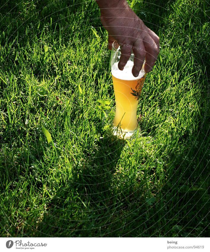 Engel trinken gelb – Alois Hingerl zupft auf der Bierwiese Hand Freude Wiese Garten hell Beleuchtung Glas Glas Rasen trinken liegen Sportrasen Bier fangen festhalten Alkohol