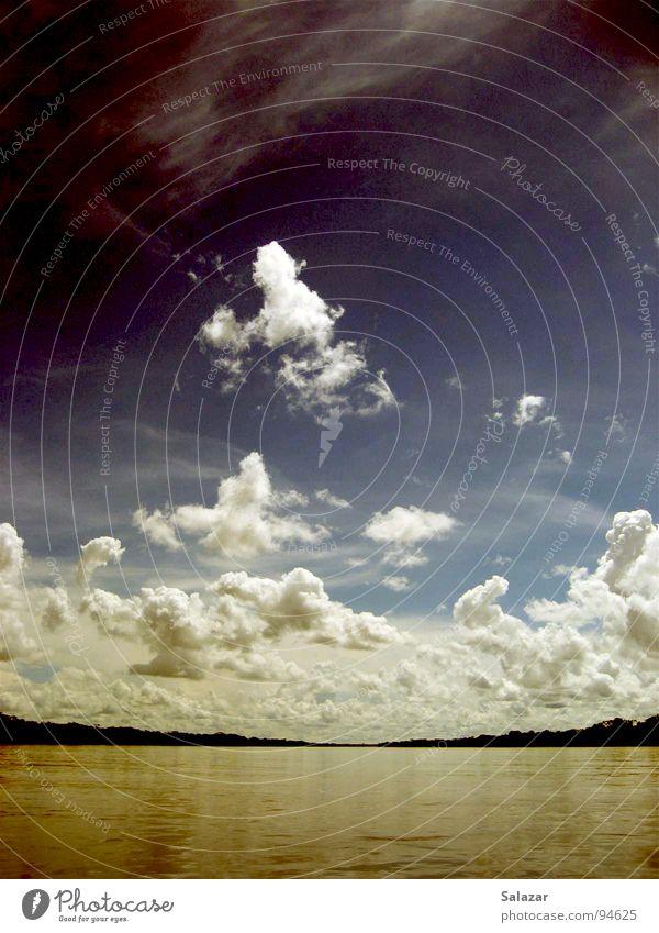 Jungleriver Himmel braun Wolken Ferne Mangrove tief Horizont Urwald Amazonas Peru Sommer Natur Panorama (Aussicht) Südamerika Fluss Bach sky blau clouds wide