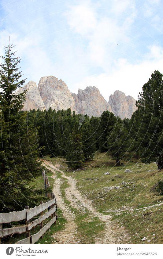 Berge in Sicht Ausflug Abenteuer Freiheit Sommer Berge u. Gebirge wandern Natur Landschaft Pflanze Himmel Schönes Wetter Baum Wiese Wald Hügel Felsen Alpen