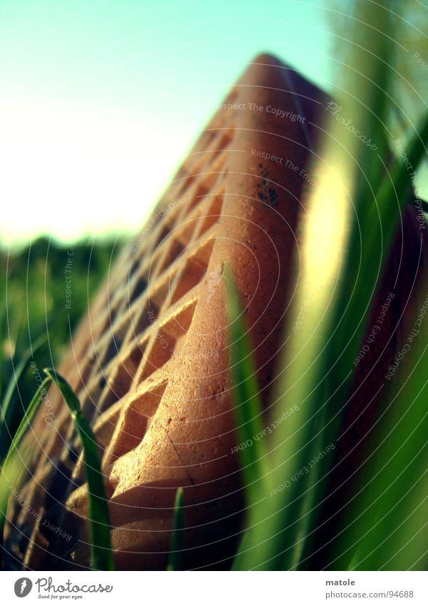 ROT IM GRUENEN_01 Himmel Sonne grün rot Sommer Ferien & Urlaub & Reisen ruhig Erholung Wiese Gras Park Schuhe Bekleidung Pause Freizeit & Hobby