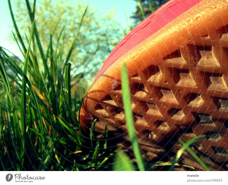 ROT IM GRUENEN_02 Himmel grün rot Sommer Ferien & Urlaub & Reisen ruhig Erholung Wiese Gras Park Schuhe Bekleidung Pause Freizeit & Hobby Sehnsucht