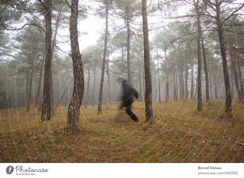 bloss weg! Mann Erwachsene Natur Landschaft Herbst schlechtes Wetter Nebel Baum Gras Wald Bekleidung rennen laufen braun schwarz flüchten Kapuze Kiefer unklar