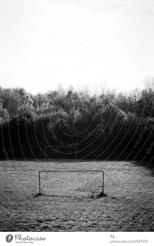 bolzplatz Freizeit & Hobby Sport Fußball Tor Sportstätten Fußballplatz Umwelt Natur Himmel Baum Sträucher Park Wiese Menschenleer Spielen Schwarzweißfoto