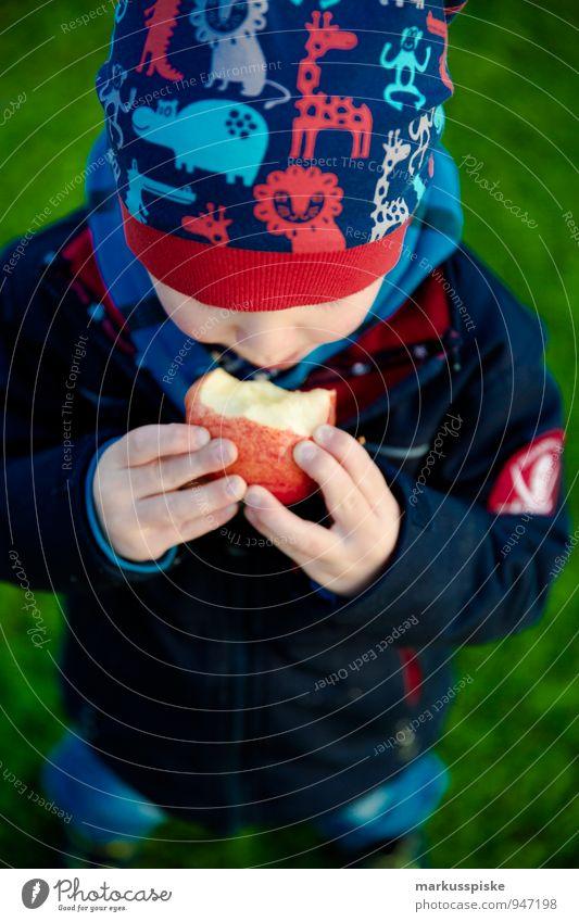 kind isst apfel Lebensmittel Frucht Apfel Picknick Bioprodukte Vegetarische Ernährung Diät Gesunde Ernährung Wohlgefühl Freizeit & Hobby Kindererziehung