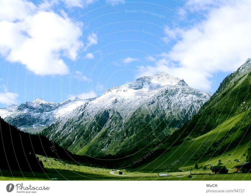 Almsommer Schnee Sommer Wolken Licht Berghütte Almabtrieb Almauftrieb Schneekuppe Gipfel Wiese Sonnenaufgang Bauernhof wandern Berge u. Gebirge Freizeit & Hobby