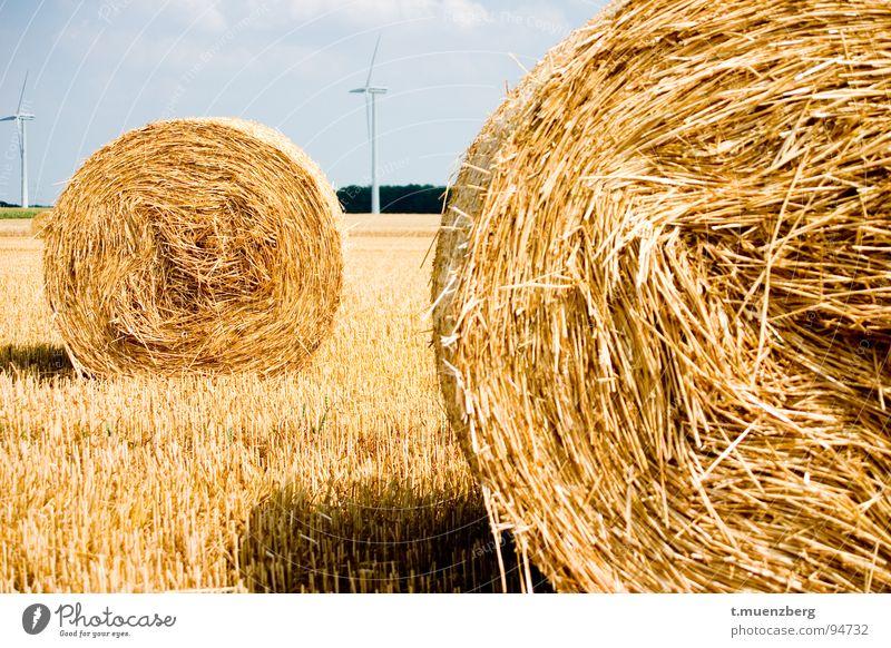 Warteschlange.... gelb Herbst Landschaft Wind Windkraftanlage Amerika Stroh Strohballen