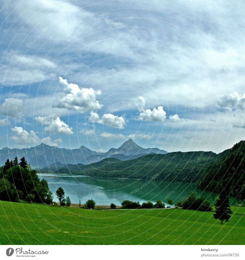 riviera royal XI Gras Sommer Naturgesetz Wiese grün Umwelt Wolken Wildnis Himmel Grünfläche Berge u. Gebirge Landschaft Pflanze Firmament