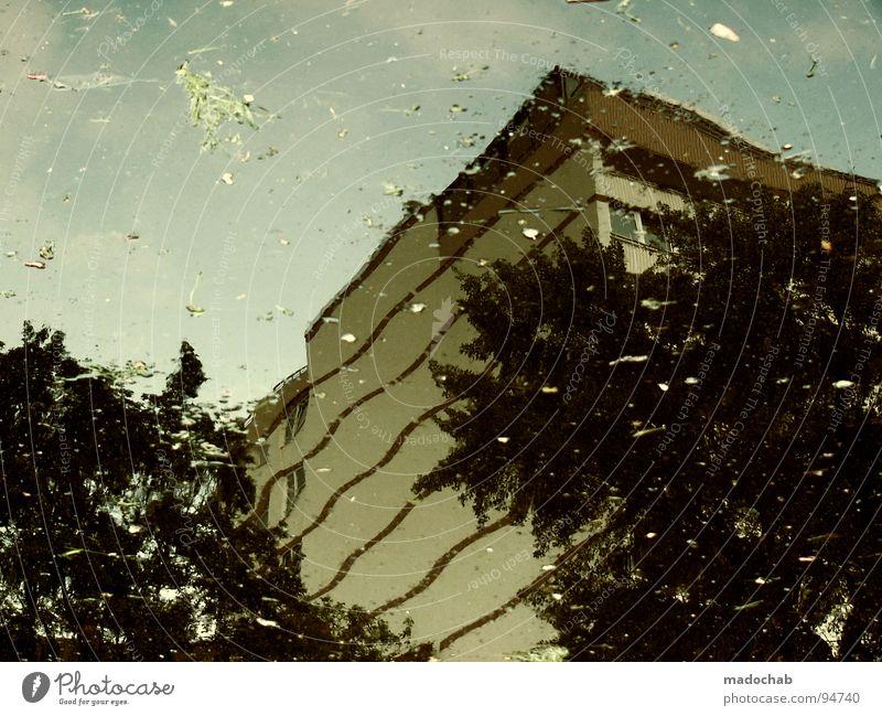 LIFE IS JUST A STORM IN YOUR EYES Natur Wasser Baum Stadt Haus Gebäude Architektur nass Hochhaus Fassade Vergänglichkeit Idylle Flüssigkeit Gemälde Surrealismus temporär