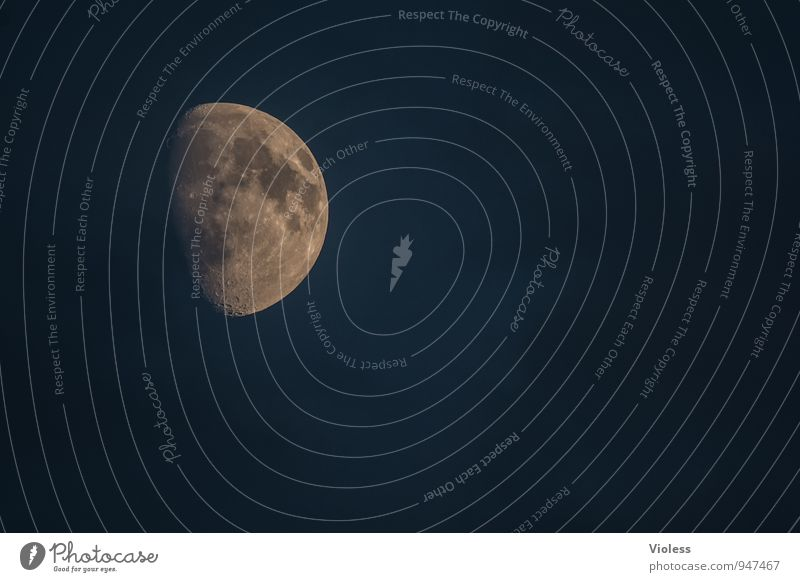 fliegen | einmal hin und zurück Himmel Ferne Umwelt außergewöhnlich leuchten fantastisch Stern Urelemente Wolkenloser Himmel Mond Planet Himmelskörper & Weltall