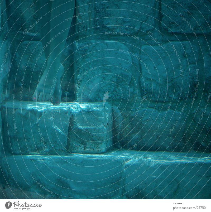 schwerelos... Frau blau Wasser Meer Beine Fuß tauchen Taucher Unterwasseraufnahme Schwerelosigkeit