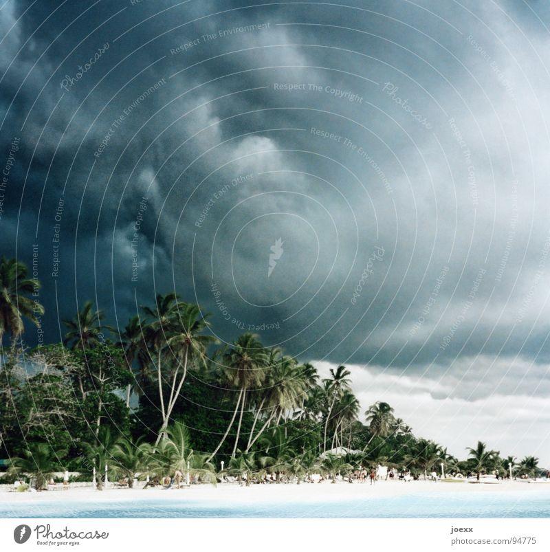 Vor dem Sturm Badeurlaub Erholung Kuba dunkel Gewitterwolken Gischt Meer Palme ruhig schlechtes Wetter See Sonnenbad Strand Badeort Leidenschaft Trauminsel