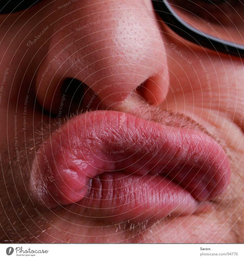 Dicke Lippe Gesicht Mund lustig Nase Lippen Bart frech Grimasse Verzerrung Dreitagebart schmollen mündlich Schmatz Knollnase