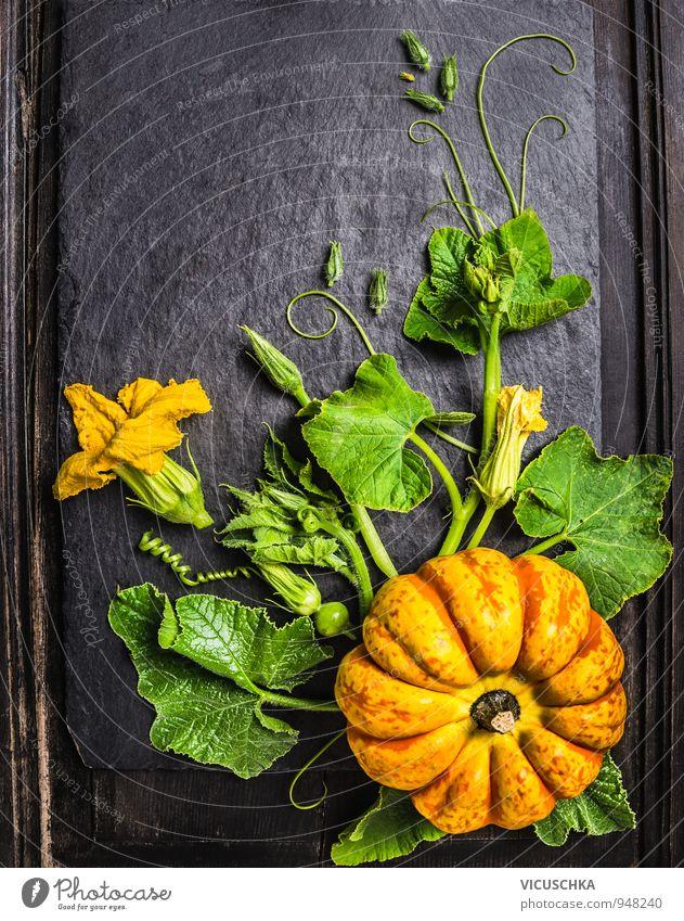 Kürbis mit Stängel, Blätter, Blumen und kleine Früchte Natur Pflanze Gesunde Ernährung dunkel Herbst Stil Holz Hintergrundbild Garten Lebensmittel Lifestyle