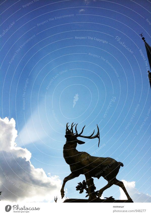 Hirsch im Licht Skulptur Tier Bonn Wildtier 1 Gefühle Stimmung Farbfoto Außenaufnahme Menschenleer Kontrast Sonnenlicht Sonnenstrahlen Sonnenaufgang