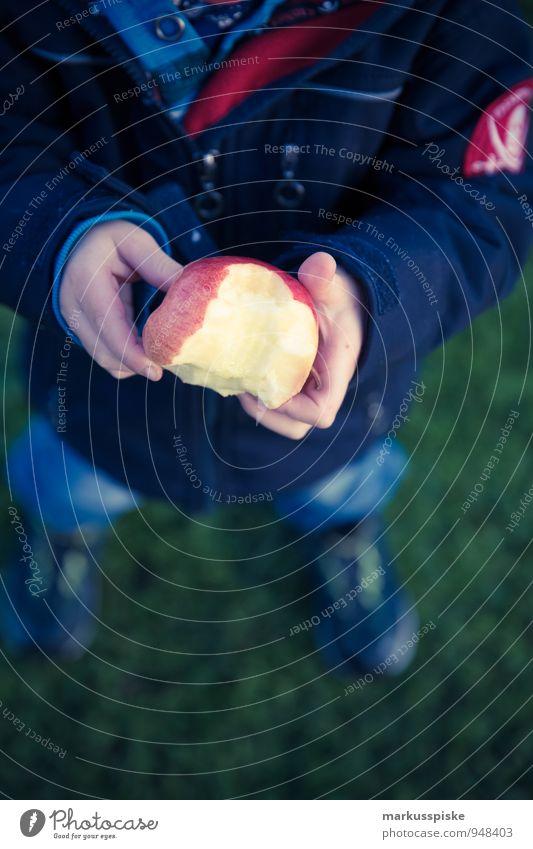 kind isst apfel Lebensmittel Frucht Apfel Ernährung Essen Picknick Bioprodukte Vegetarische Ernährung Diät Fasten Gesundheit Gesunde Ernährung harmonisch