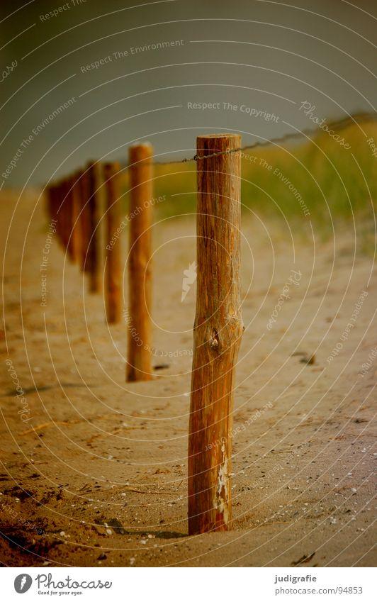 Strandflucht Holz Umweltschutz Gras Draht Meer Küste Farbe Sand Pfosten Grenze Schutz Stranddüne betreten verboten Himmel Linie Flucht Ostsee
