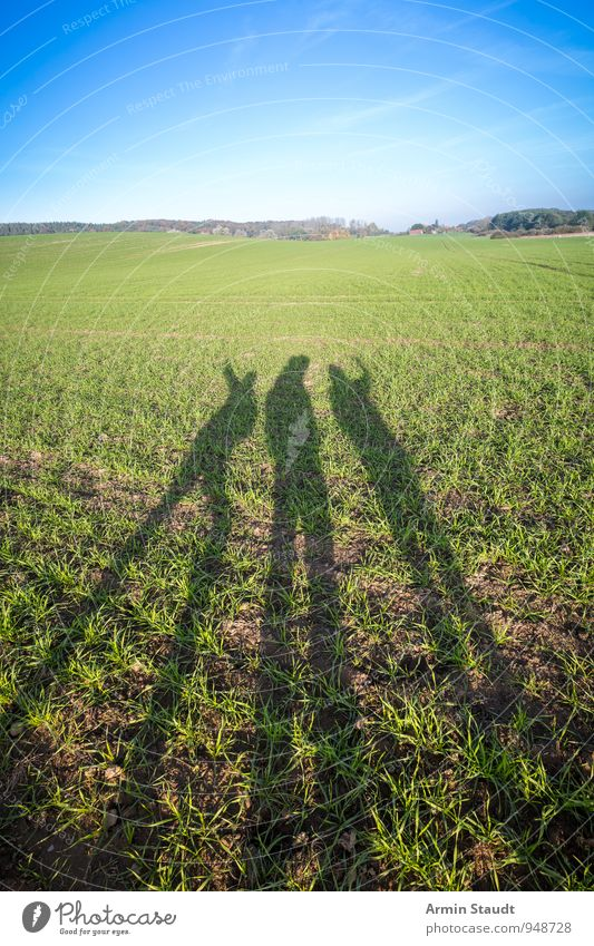 Schatten - Feld Mensch Natur Ferien & Urlaub & Reisen blau grün Landschaft ruhig Freude Ferne Umwelt Freiheit Menschengruppe hell Stimmung Freundschaft