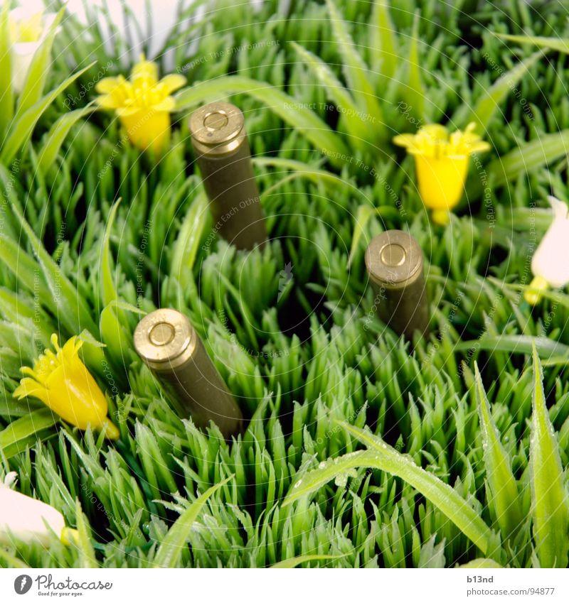 Ausflug Wiese Gras Blume Bildart & Bildgenre grün weiß gelb braun Stillleben Frühling Rasen Pflanze Kugel Munition Patrone Statue Kunststoff gestellt Kitsch