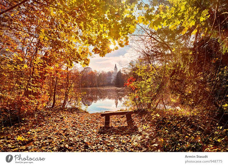 Märchenhaft Himmel Natur Ferien & Urlaub & Reisen schön Sonne Erholung Landschaft ruhig Wolken Wald Herbst Glück Freiheit außergewöhnlich hell Stimmung