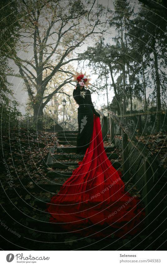 red carpet Mensch Frau Natur Baum rot Umwelt Erwachsene Herbst feminin Garten Park Treppe Romantik Treppengeländer