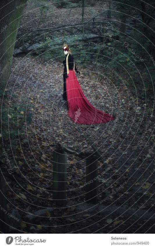 red carpet Mensch feminin Frau Erwachsene 1 Subkultur Umwelt Natur Herbst Garten Park Schleppe heilig Blatt Brücke Farbfoto Außenaufnahme Ganzkörperaufnahme