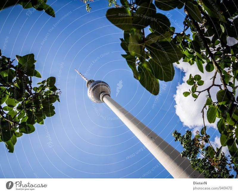 Grün Himmel blau Stadt grün weiß Baum Wolken Architektur Berlin Hauptstadt Wahrzeichen Stadtzentrum Sehenswürdigkeit Fernsehturm Blätterdach
