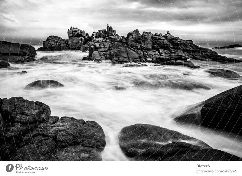 Felsenfront Natur weiß Meer Landschaft schwarz Umwelt grau Wellen Sturm Frankreich Granit Cote de Granit Rose