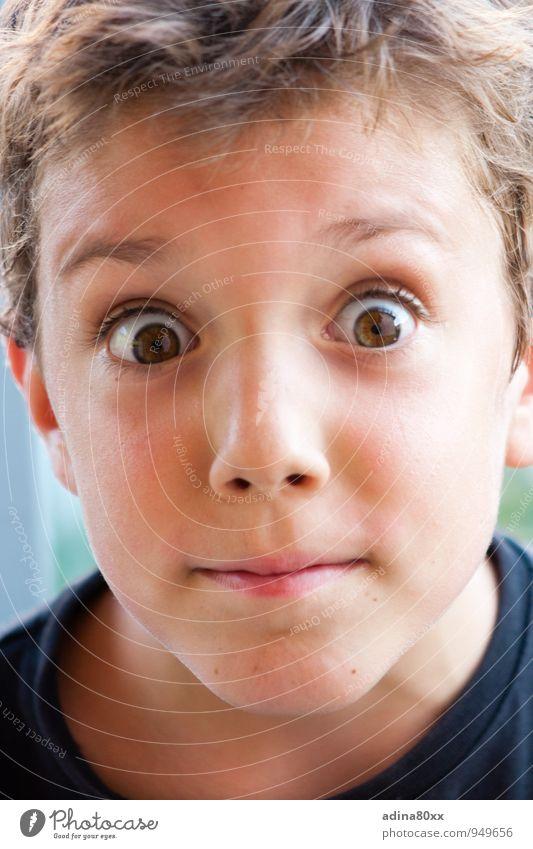 Überrascht Freude Junge Angst Freizeit & Hobby authentisch Kindheit gefährlich bedrohlich Kommunizieren Idee Abenteuer Neugier Bildung Risiko entdecken Leidenschaft