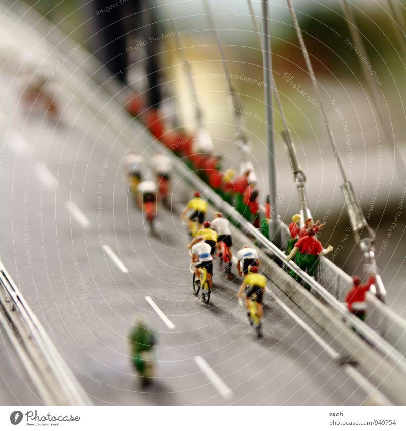 internationale Friedensfahrt Mensch Jugendliche Mann Junger Mann Erwachsene Straße feminin Wege & Pfade Sport Menschengruppe maskulin Freizeit & Hobby Fahrrad