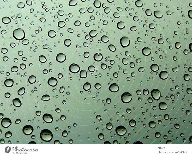 purple rain Wasser grün blau Fenster Regen Wassertropfen nass Sturm