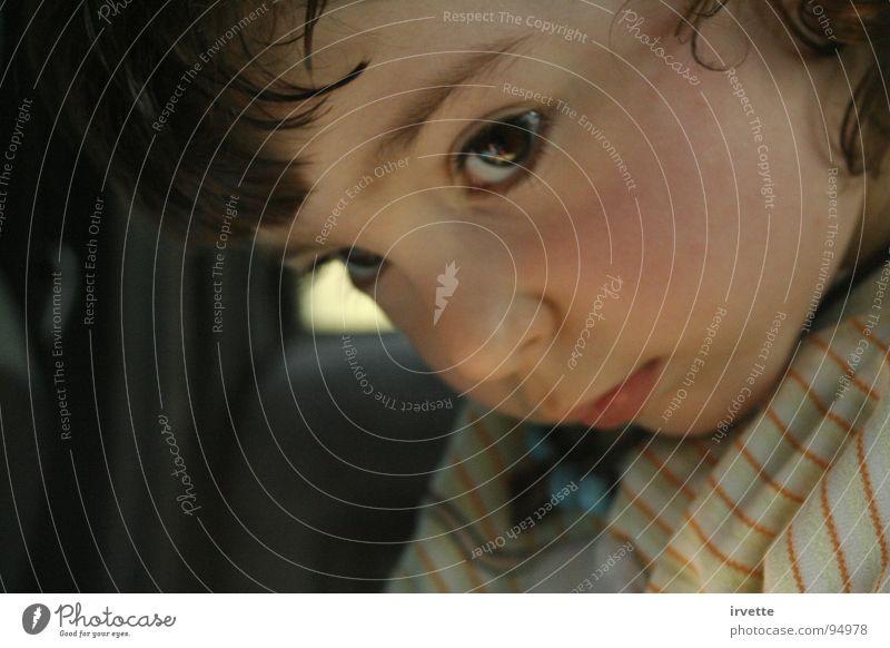 Car shelter Kind schön Angst klein Kleinkind Schauspieler