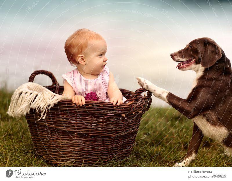 Freunde Hund Mensch Kind Natur blau schön Mädchen Tier feminin Liebe See braun rosa Freundschaft sitzen Fröhlichkeit