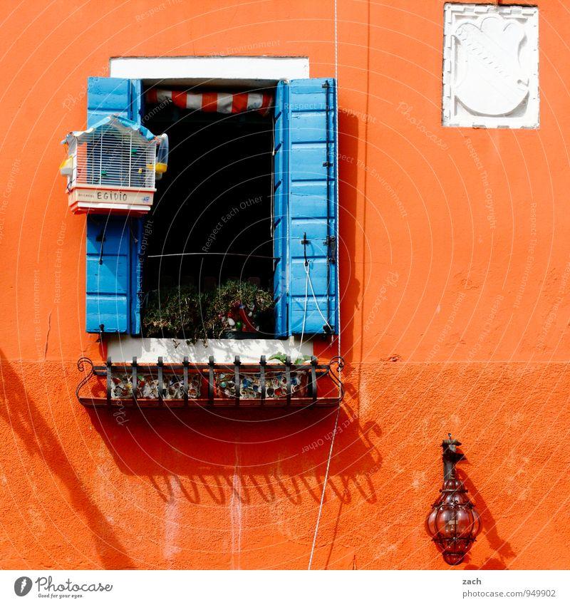 Orange blau Haus Fenster Wand Mauer Holz Lampe Fassade orange Häusliches Leben Italien Altstadt Venedig Fensterladen Topfpflanze Fischerdorf